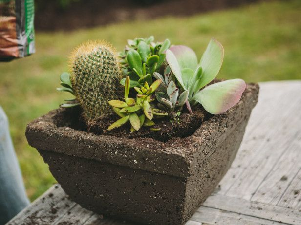 Like This Earthy Hypertufa Pot? Make Your Own With These Steps --> http://www.hgtvgardens.com/photos/make-a-hypertufa-planter?soc=pinterest