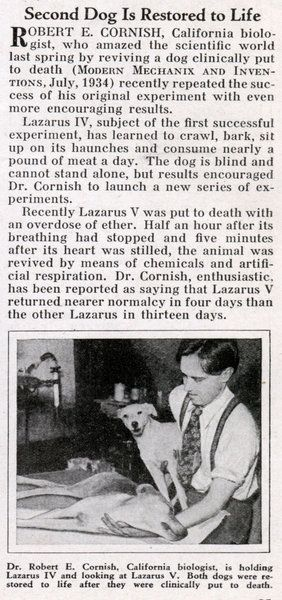 """Cornish repeated the experiment later in the year (""""Second Dog Is Restored to Life,"""" Modern Mechanix and Inventions, Jan. 1935). He allegedly killed the dogs by nitrogen gas (or ether), then revived them with an injection of blood, heparin, and adrenalin. The dogs, with the possible exception of Lazarus IV, suffered considerable brain damage."""