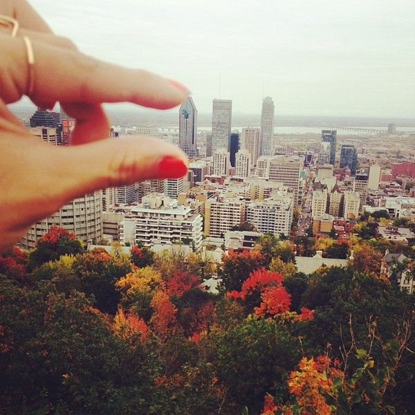 22 autumn #MTLMOMENTS that are perfect, gorgeous and happy.
