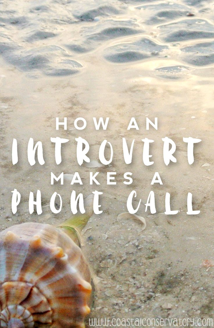 Humanity has been teleconversing for the last 139 years. What, pray tell, is the big deal about the humble phone call? It's a simple 2-step process:    1. Dial number  2. Talk    Quite easy, is it not? Well, maybe for those who are extroverts. However, if you are an introv
