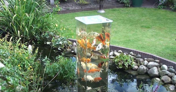Hast du zuhause einen Teich, aber die sich darin befindlichen Fische kannst du kaum sehen? Wir haben eine Superidee für dich. Mithilfe einer Glas- oder Plastikschüssel kannst du einen prachtvollen Fischturm bauen. Da das Wasser im Fischturm wärmer ist, sind die Fische schnell geneigt, in den Turm zu schwimmen, da es dort herrlich warm ist. …