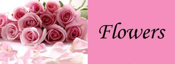Online gift store for sending gifts to Pakistan like flowers, perfumes, cloths, cakes, mithai or chocolates to your loved ones, send gifts to pakistan. http://www.pakgiftshop.com/shops12/bikes-cars-motor-cars-c-266_269.html