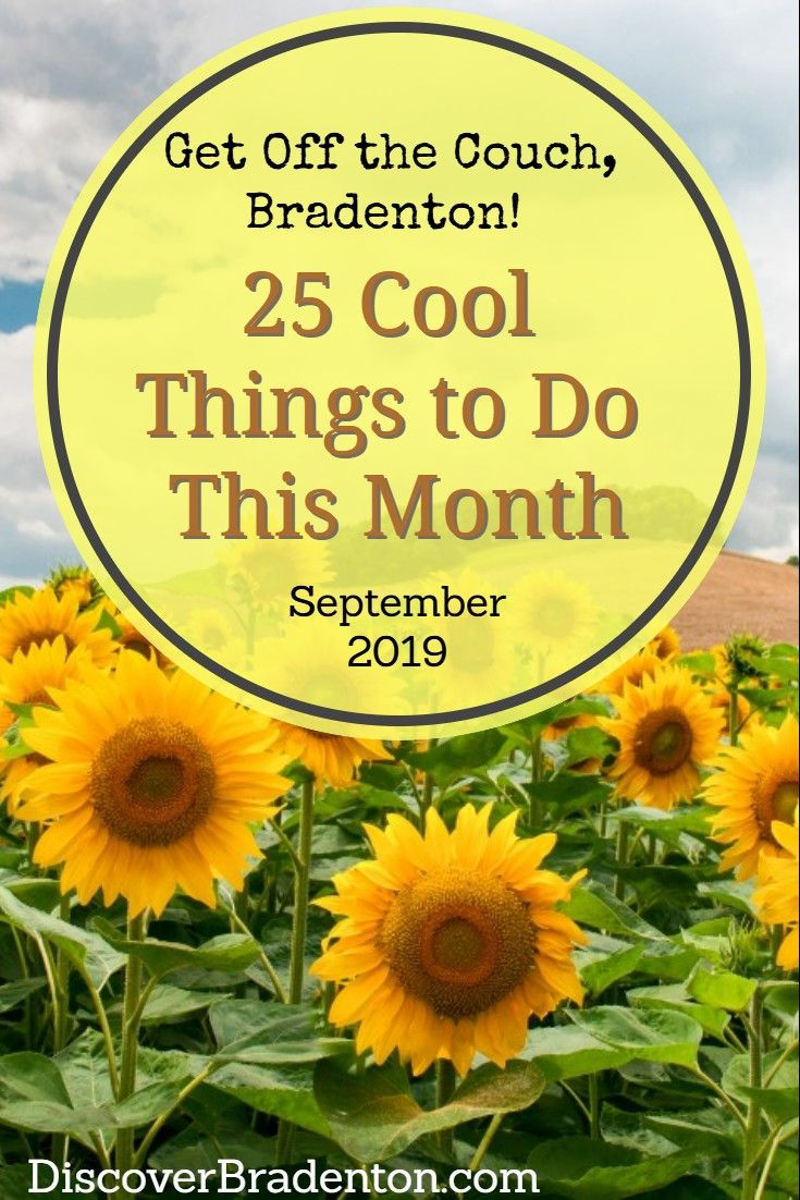 Are You Looking For Fun Things To Do In Bradenton Florida This Month Check Out This List Bradenton Bradentonflor Fun Things To Do Things To Do Bradenton