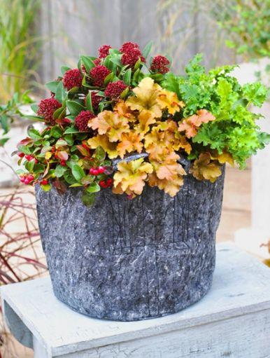 5344 best le jardin se partage images on pinterest - Palette jardiniere verticale ...