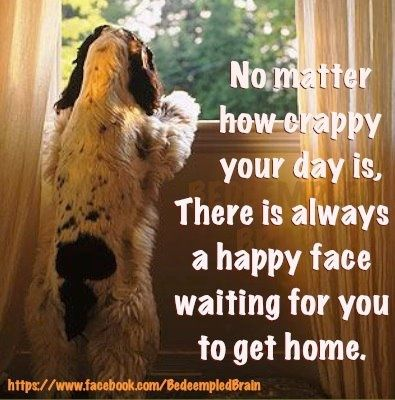 There is always a happy face waiting for you at home.