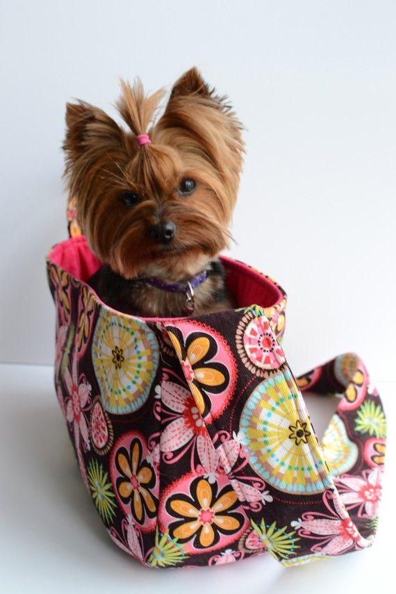 25 Best Puppy Images On Pinterest Dog Accessories Dog
