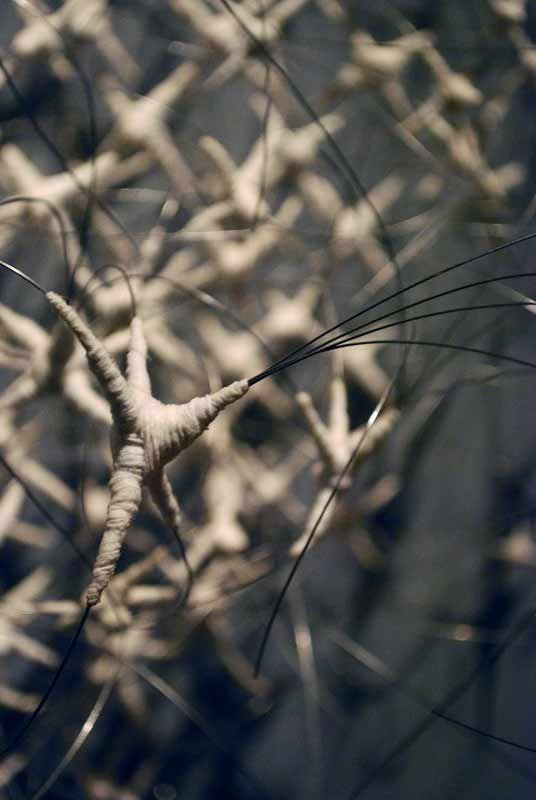 Anne Mudge | Niche (detail) | stainless steel wire, fiber