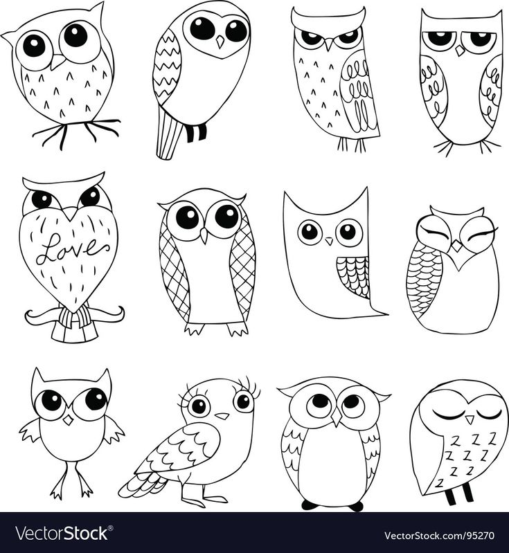 hand drawn cartoon owls in a variety of styles. Do…