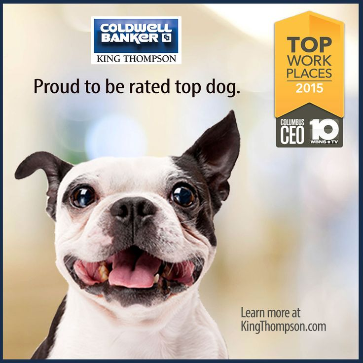 We are proud to announce that Coldwell Banker King Thompson has been named a Top Workplace by Columbus CEO. Thank you to all the employees who voted and made this happen! http://bit.ly/TopWorkplacesCBKT