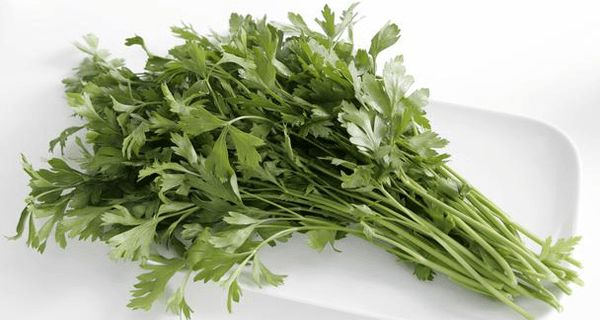 Natural Recipes for Flushing Bacteria!!!