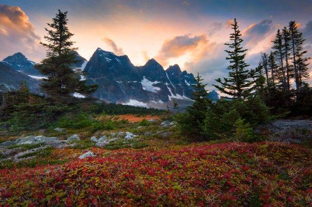 Долина Тонкин, Канадские Скалистые горы, Альберта, Канада