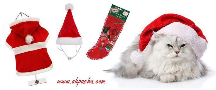 Les chats aussi ont droit à leurs cadeaux de Noël chez Oh ! Pacha. Retrouvez tous ces produits dans notre boutique en ligne : http://www.ohpacha.com/57-bonnet-noel-chat