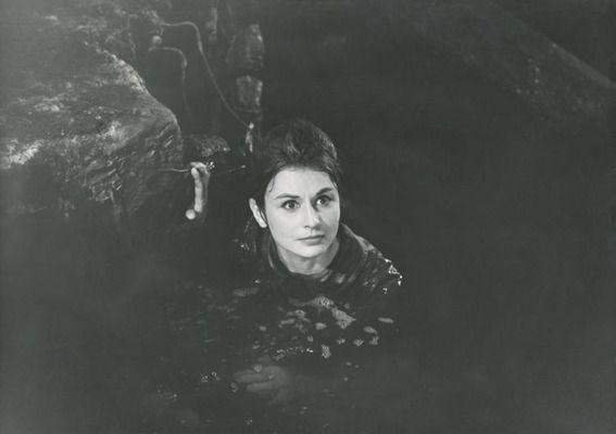 Joanna Jędryka