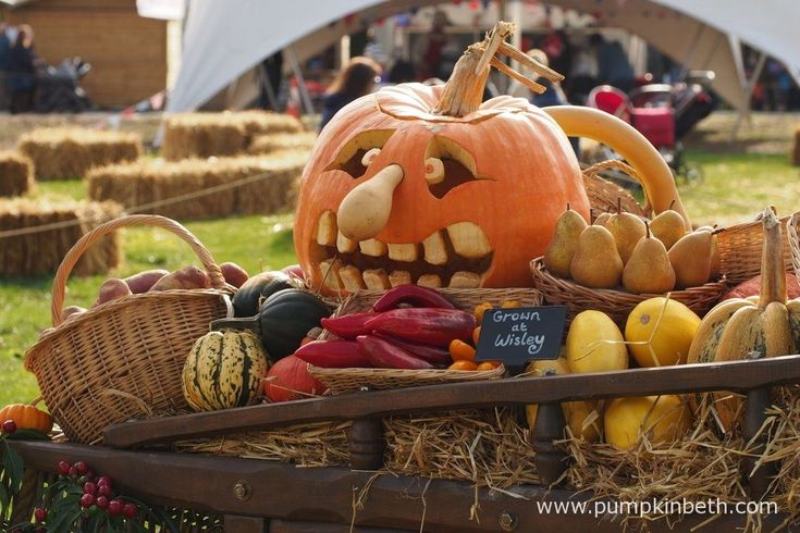 An array of vegetables grown at RHS Garden Wisley, on display at Taste of Autumn. Including this fun pumpkin that as been carved into a face.