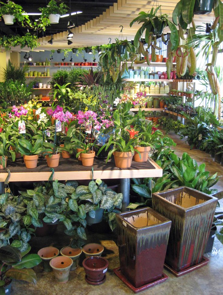 best 25 garden centre ideas on pinterest planters garden centre flower pot art and flower. Black Bedroom Furniture Sets. Home Design Ideas