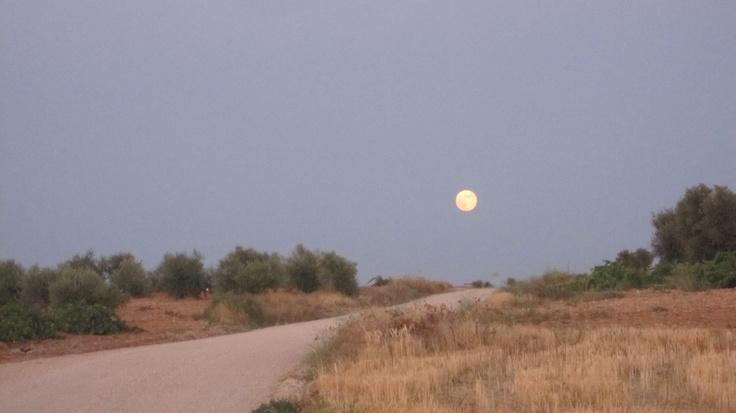 La Luna de la Mancha
