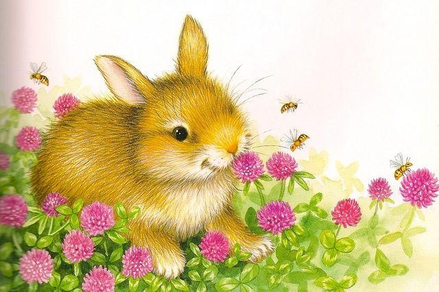 44 mejores imgenes de lisa mccue dibuix infantil en Pinterest
