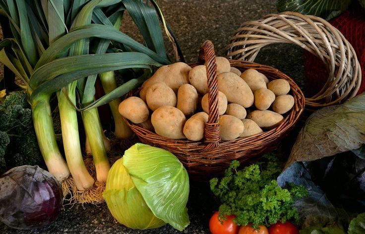 Tipps zum Einlagern von Lebensmitteln - Obst und Gemüse leben auch nach der Ernte weiter. Sie atmen und verdunsten Wasser. Darauf muss bei der Lagerung...