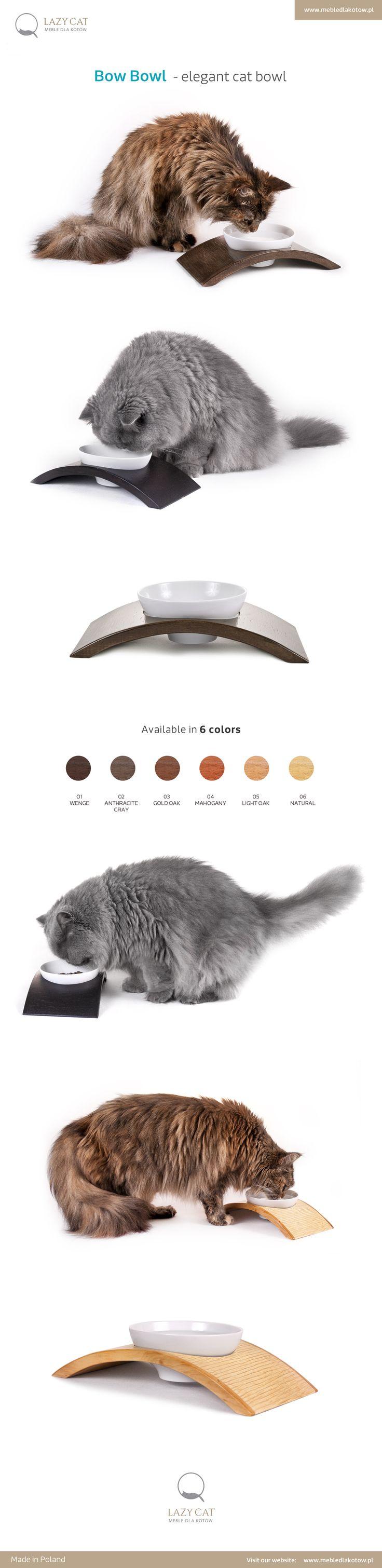 Modern cat bowl