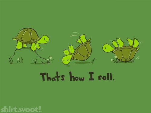 turtle, turtle.  waterfireviews.com