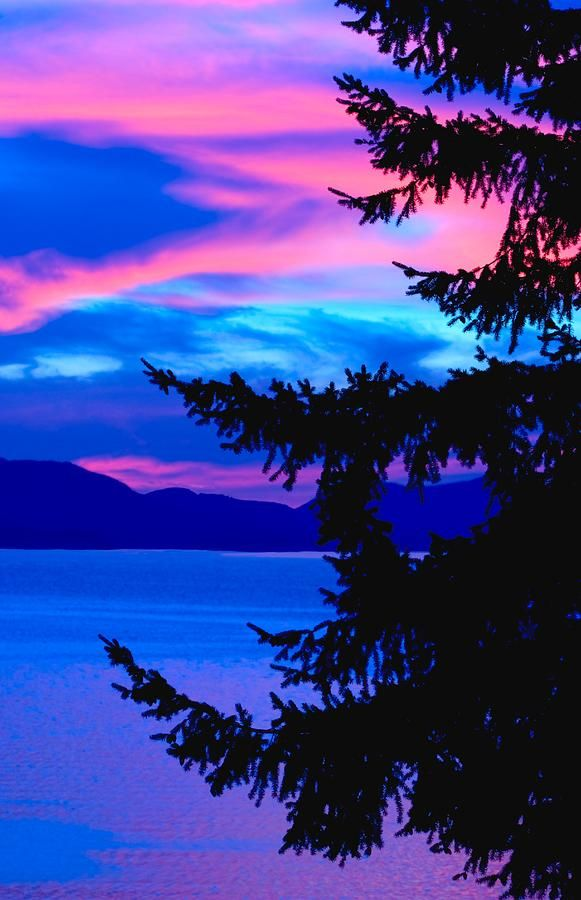 ☀Pink And Blue Sunset by Raven Regan