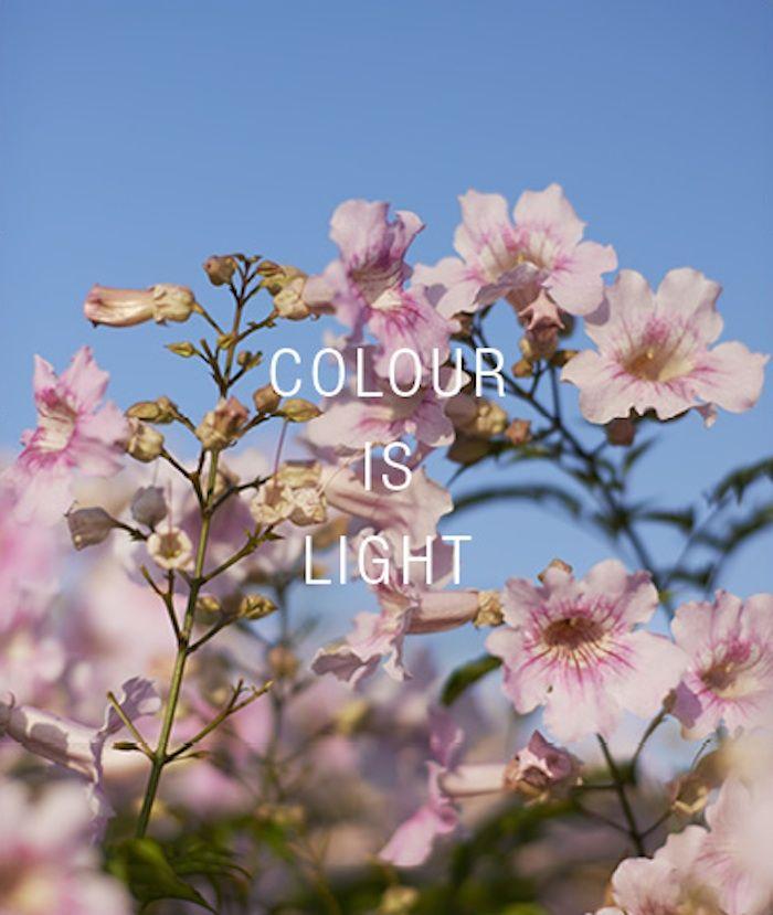 http://toast.co/colourislight