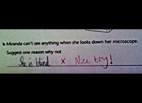 best funny student essays test answers and drawings images on  taking tests isn t fun for anybody but it s hard not to smile at these 25 hilarious test answers by students