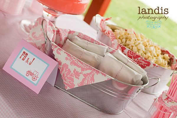 Farm Chic Birthday Party - Kara's Party Ideas - The Place for All Things Party