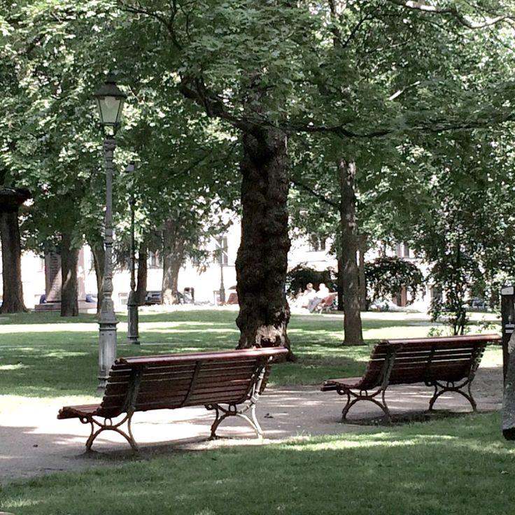Kaunispuisto nimestä huolimatta. Helsinki