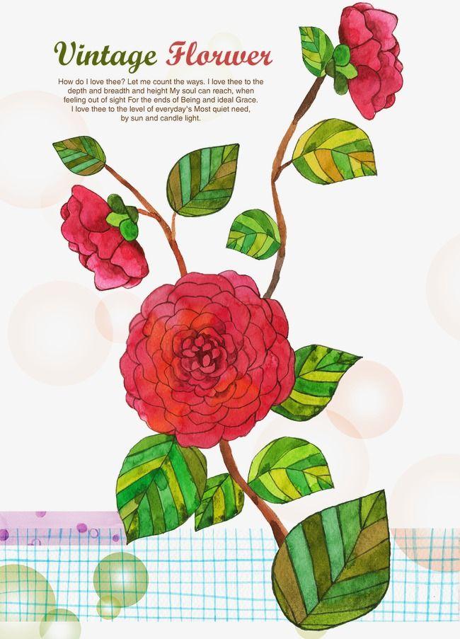 جميلة مرسومة باليد صور ألوان مائية الزهور Watercolor Pictures Picture Illustration Creative Illustration