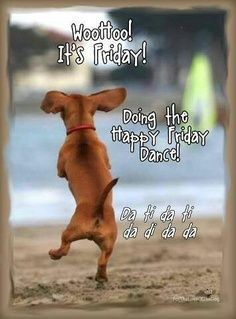 FREAKY FRIDAY on Pinterest | Happy Friday, Tgif and Friday Dance