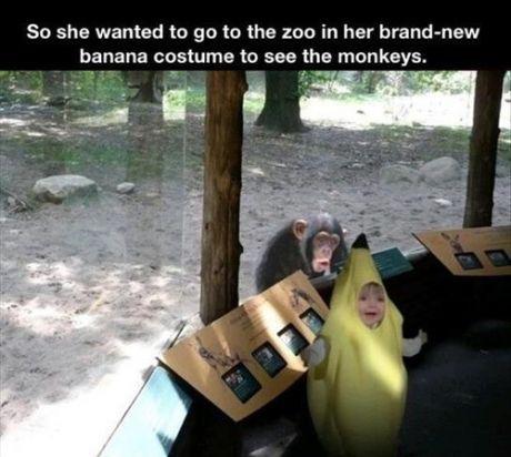 Too cute, too funny