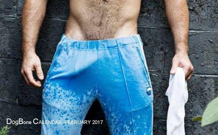 DogBone CALENDAR - February 2017