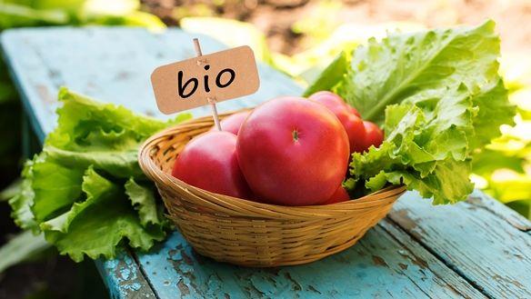 Finomabbnak érezzük a bio ételeket?