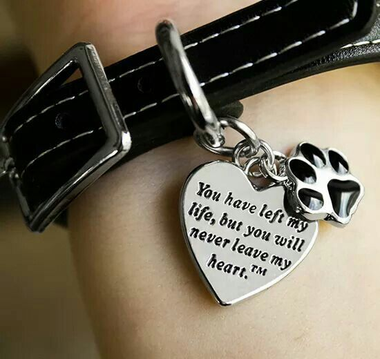 Pet memory bracelet...I want this!    https://m.theanimalrescuesite.greatergood.com/store/ars/item/63971/never-leave-my-heart-remembrance-bracelet?utm_source=ars-fan&utm_medium=paid-fb&utm_term=10312015&utm_content=photo&utm_campaign=pop-63971-heart-remembrance-bracelet&origin=ars_face_sponsor_fan_pop-63971-heart-remembrance-bracelet_103115