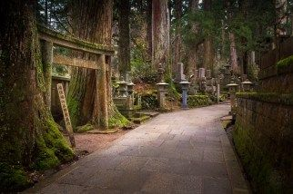 Japan - Kōya-san - Der Waldfriedhof