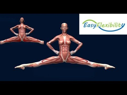How to Highland Leap Scottish Dancing Muscle Animation EasyFlexibility #highlanddance #dance