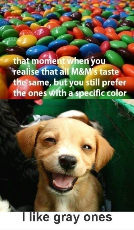 I like the grey ones: Laughing So Hard Im Cry, Color Blinds, Blue Green, Puppys Faces, Poor Dogs, Damn Funnies, Color M&Ms, Can'T Stop Laughing, Dogs Faces