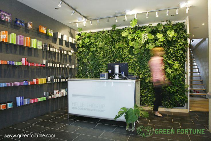 Green Fortune Plantwall / vertical garden in retail space. Shop design.