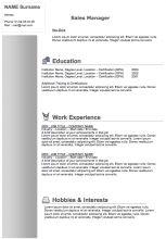 Curriculum Vitae (CV) : Resume Samples & Resume Format