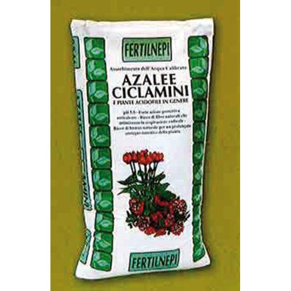 PREZZO BRICOPRICE.IT € 2.9 TERRICCIO ACIDOFILE LT20 Clicca qui http://www.bricoprice.it/shop/shop/concimi-e-diserbanti/terriccio-acidofile-lt20/