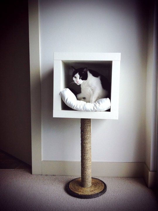 7 Ikea Hacks Your Cats Will Love Diy Cat Projects Pinterest