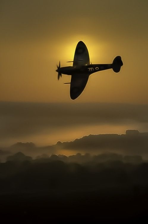 Dawn sortie by Richard Tierney 500px