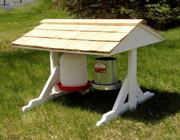 Nice feeding and watering station would keep the rain out of the food and the sun out of the water.