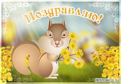 Открытка «Поздравляю!» с белкой и цветами