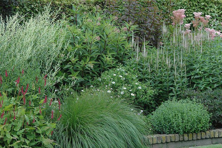Privé tuin: hart en ziel - Kwekerij In Goede Aarde