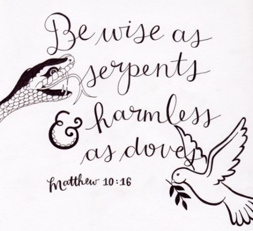 Image result for wise as serpents harmless as doves