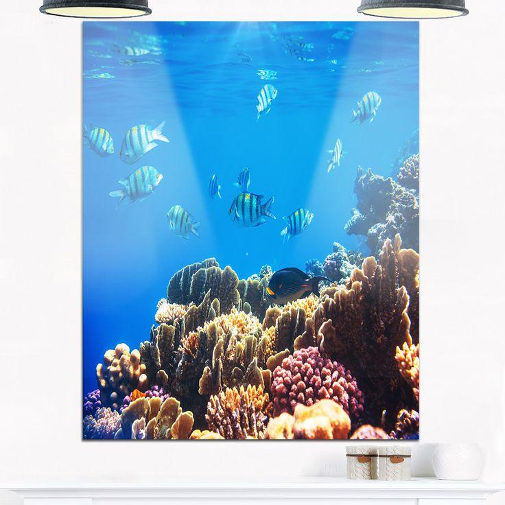 Bright Blue Waters and Coral Fish - Seashore Glossy Metal Wall Art