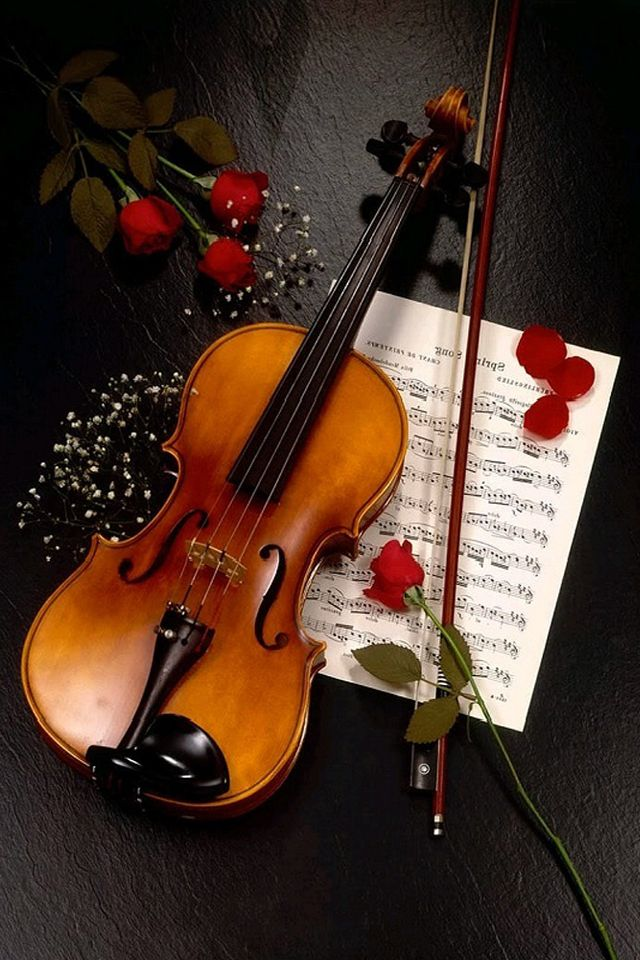 violin roses music rose violins instruments iphone aesthetic instrument musical viola sheet prettiest painting violino rosas cello guitar wallpapers songs