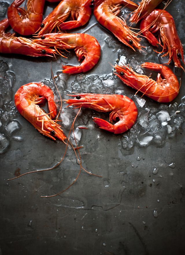 Pink prawns on charcoal for #seafood